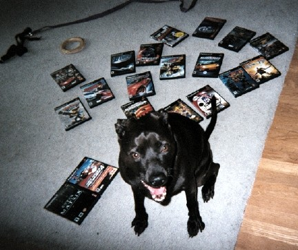 Jazz Guarding Her Video Games